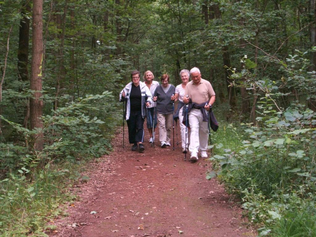 Nordic Walking Würzburg OT Versbach